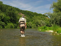 Fly fishing. On river in wildness Stock Image