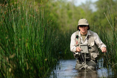 Fly-fishing. Horizontal image of concentrated fly-fisher royalty free stock photo