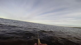 Fly fishing in the baltic sea after trout. Sport fishing for trout in sweden stock video