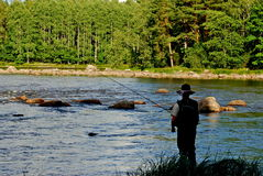 Fly fishing from the bank royalty free stock images