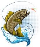 The Fly Fishing Stock Photos