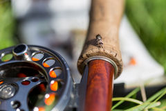 Fly fishing bugs and road with real Royalty Free Stock Photo