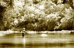 Fly Fishing infrared stock image
