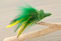 Fly Fishing Lure Stock Photos