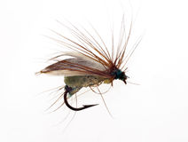 Fly Fishing Lure Stock Image