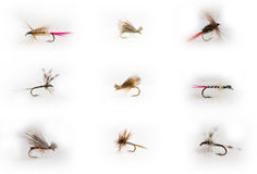 Fly-fishing lures Royalty Free Stock Image