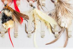Fly fishing lures. A set of fly fishing lures Royalty Free Stock Images