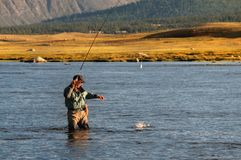 Fly fishing in Mongolia. Fly fishing on Lake Hoton Nuur in Mongolia Stock Images