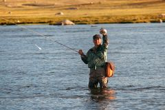 Fly fishing in Mongolia. Fly fishing on Lake Hoton Nuur in Mongolia Royalty Free Stock Photos