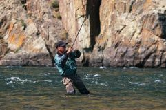 Fly fishing in Mongolia -  grayling fish. Fly fishing on river Houd in Mongolia -  grayling fish Royalty Free Stock Photography