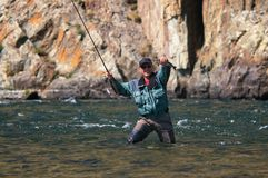 Fly fishing in Mongolia -  grayling fish. Fly fishing on river Houd in Mongolia -  grayling fish Royalty Free Stock Images