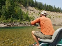 Fly fishing montana. Fly fishing the middle fork of the flathead river near glacier national park. Fishing dry flies for cutthroat trout Stock Image