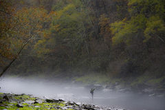 Fly Fishing in Rain Stock Image