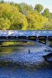 Fly fisherman on the Boise River in downtown Boise, Idaho stock photography