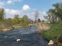 Fly fishing in the renatured Nidda River Stock Images