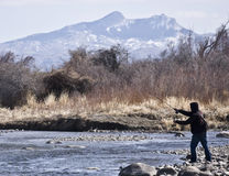 Fly fishing in river Royalty Free Stock Photo
