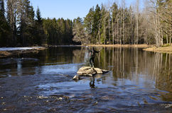 Fly fishing on a rock Stock Photography