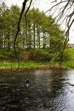 Fly fishing in Scotland Royalty Free Stock Images