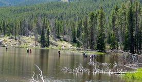 Fly fishing at Sprague Lake