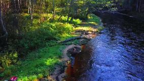 Fly Fishing. Video of a person fly fishing on a beautiful, sunny day stock video