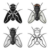 Fly icon in cartoon style isolated on white background. Insects symbol stock vector illustration. Fly icon in cartoon design isolated on white background vector illustration