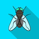 Fly icon in flat style isolated on white background. Insects symbol stock vector illustration. Stock Photography
