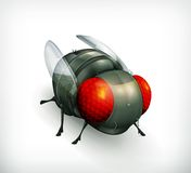 Fly icon Stock Photos