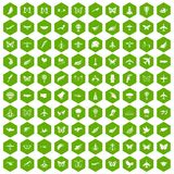 100 fly icons hexagon green. 100 fly icons set in green hexagon isolated vector illustration vector illustration