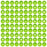 100 fly icons set green. 100 fly icons set in green circle isolated on white vectr illustration Vector Illustration