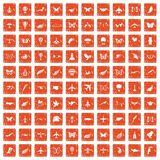 100 fly icons set grunge orange. 100 fly icons set in grunge style orange color isolated on white background vector illustration Royalty Free Stock Image