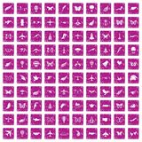 100 fly icons set grunge pink. 100 fly icons set in grunge style pink color isolated on white background vector illustration Stock Photography