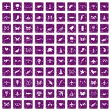 100 fly icons set grunge purple. 100 fly icons set in grunge style purple color isolated on white background vector illustration Stock Images