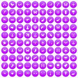100 fly icons set purple. 100 fly icons set in purple circle isolated on white vector illustration Royalty Free Illustration