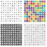 100 fly icons set vector variant. 100 fly icons set vector in 4 variant for any web design isolated on white Stock Images