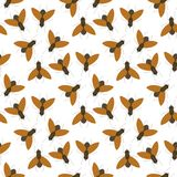 Fly insects wildlife entomology bug animal nature beetle biology buzz icon   Stock Images