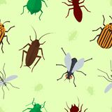 Fly insects wildlife entomology bug animal nature beetle biology buzz icon vector illustration pattern seamless. Fly insects wildlife entomology bug animal Stock Images