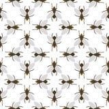 Fly insects wildlife entomology bug animal nature beetle biology buzz icon vector illustration pattern seamless Royalty Free Stock Image