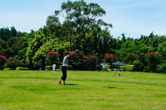 Fly a kite on the lawn Royalty Free Stock Photography