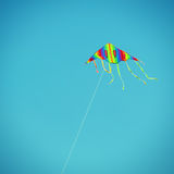 Fly a Kite Royalty Free Stock Photos