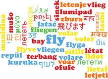 Fly multilanguage wordcloud background concept Royalty Free Stock Photo