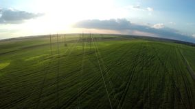 Fly over power lines. Flying over an agricultural field. stock footage