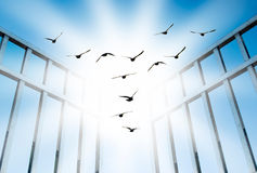 Fly overcome the difficult gate. Fly for freedom, overcome the difficult gate stock photos