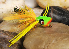 Fly popper. Fly fishing popper used for trout and sunfish Royalty Free Stock Image