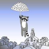 Fly raccoon with umbrella Stock Image