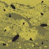 Fly and roach background. A disgusting vector background featuring flies, roaches and maggots Stock Image