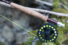 Fly rod and reel. Fly fishing rod on old tree Royalty Free Stock Photography
