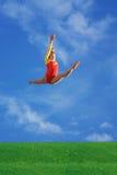 Fly in sky Stock Photos