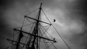 Fly stormen Fotografering för Bildbyråer