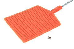 Fly swatter Royalty Free Stock Photos