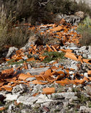 Fly Tipped Rubble Royalty Free Stock Photos